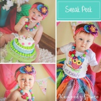 birthday_owl_1_owl_kennedy_sneak_peek
