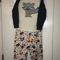 raccoon_applique_outfit