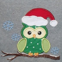 winter_owl_square